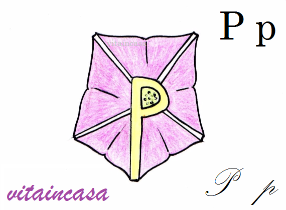 p di petunia by vitaincasa res