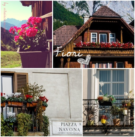 fiori balconi (2).jpg
