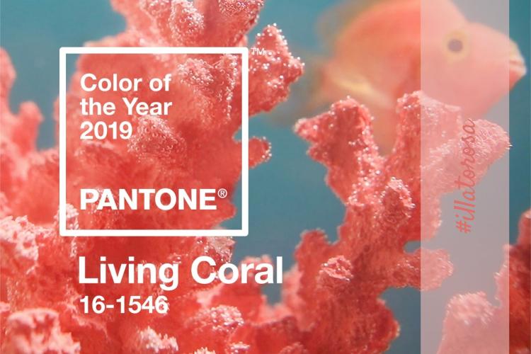 Colore dell anno Pantone 2019 by vitaincasa.jpg