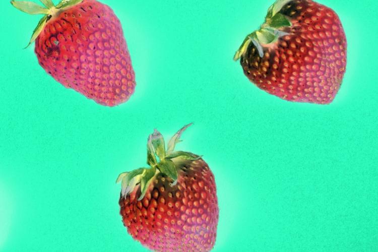 Strawberry dream by vitaincasa