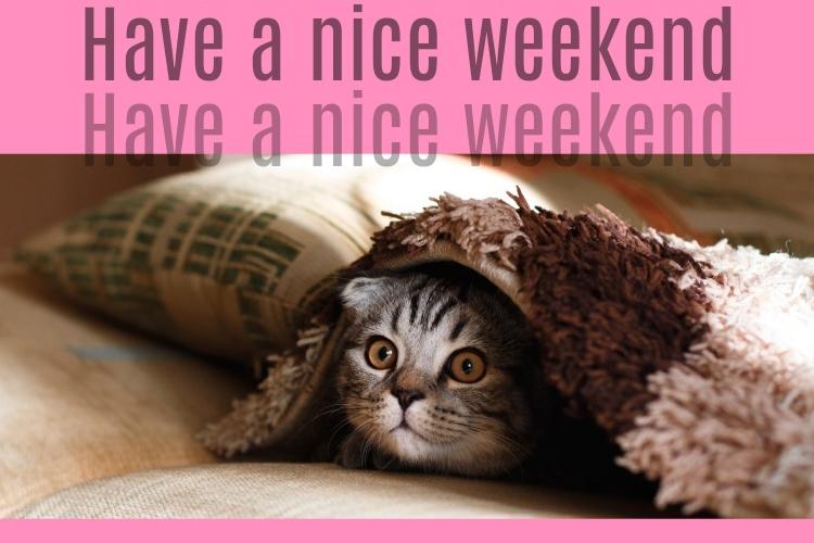09.Have a nice weekend